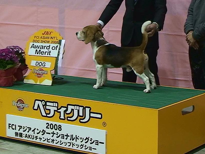Award_of_merit